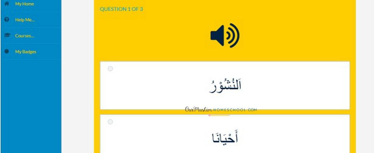 Ali and Sumaya school online quiz