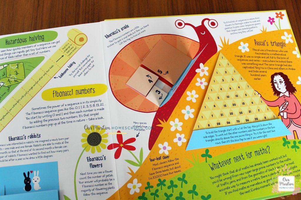 Maths book for snails homeschool unit study