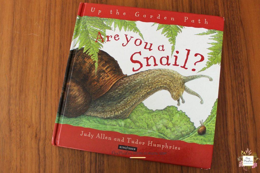 Snails unit study