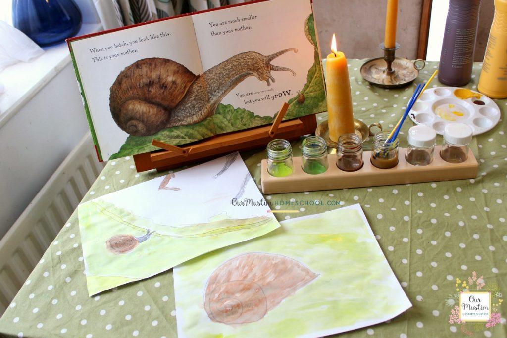 Snail Homeschool Unit Study