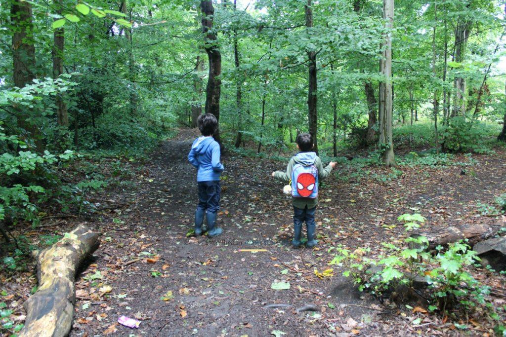 Muslim homeschool week nature walk