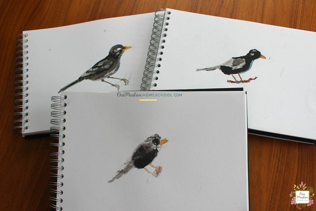 nature study blackbird