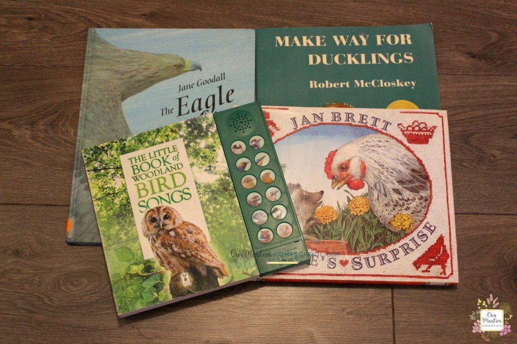 Bird picture books