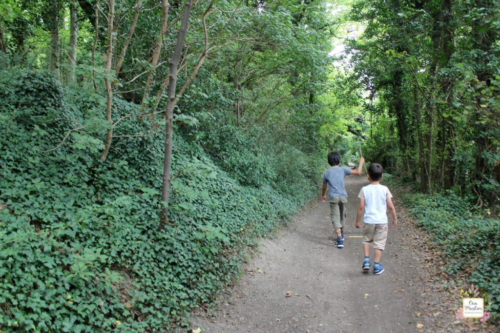 road through the woods rudyard kipling