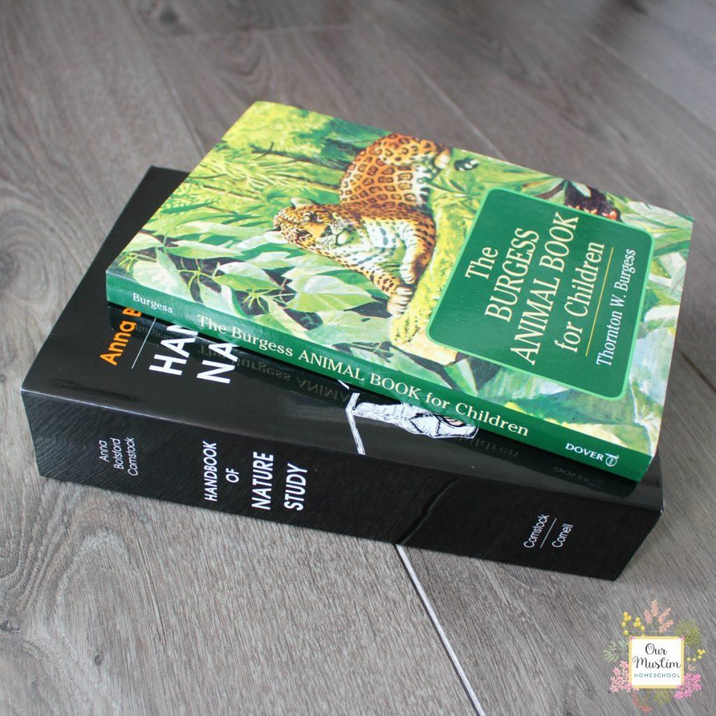 Wild british mammals living books Charlotte Mason Homeschool