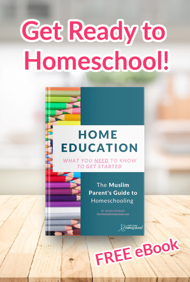 How to Homeschool eBook - Grab the free Home education ebook to find out what you need to know about how to start homeschooling